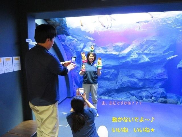 北の大地の水族館 中根さん8.jpg